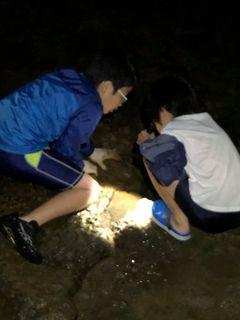 カニ取り 石地海岸�D.jpg